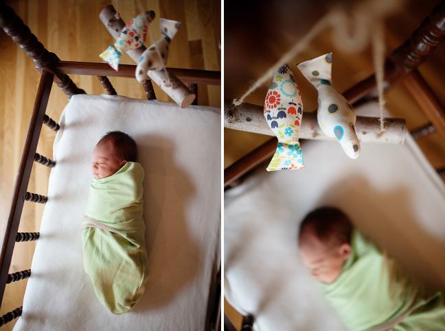 denver-newborn-photographer001